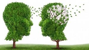 Alzheimer la enfermedad del siglo XXI